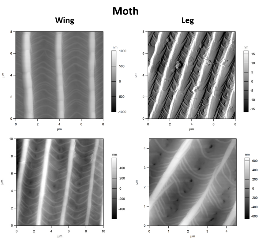 Nanoscale Analysis - Harvard CNS